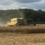 Good harvesting weather