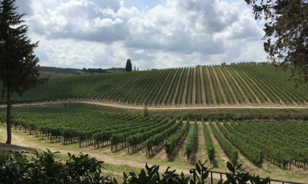 Florencetown: cycling through Chianti wine country